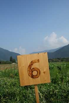 Writing Forward turns six